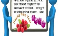 happy-new-year-messages-in-hindi